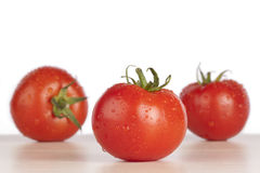 Fresh wet red tomatoes. Close-up of fresh wet and red ripe tomatoes on white background and wooden table Stock Photo