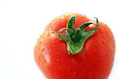 Fresh wet tomato stock photography