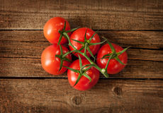 Fresh wet tomato branch on vintage wood table. Tomato branch on vintage wood table - rural still life from above, fresh harvest from garden Royalty Free Stock Photography