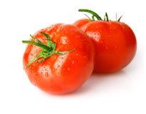 Fresh wet tomato fruits. Isolated on white background Royalty Free Stock Image