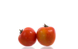 Fresh wet tomato fruits Royalty Free Stock Image
