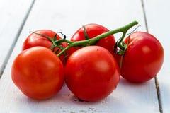 Fresh wet tomatoes Stock Photo