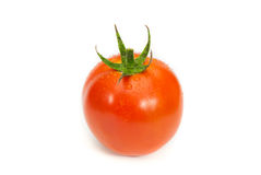 Fresh wet tomatoes vegetable isolated. Fresh wet tomatoes vegetable on white background Stock Images