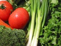Fresh wet vegetables stock photo