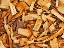 Fresh wet wood chip from alder tree, texture Royalty Free Stock Photos