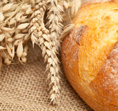 Fresh wheat bread on burlap Royalty Free Stock Images