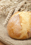 Fresh wheat bread on burlap and wheat Royalty Free Stock Image