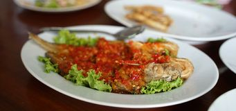 Fresh Whisker Sheaifish deep fried and put chili sauce on top. Serving on the white plate royalty free stock photo