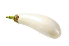 Fresh white aubergine royalty free stock photography
