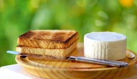 Fresh white cheese . Stock Photos