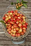 Fresh white cherries. In a basket Stock Photo