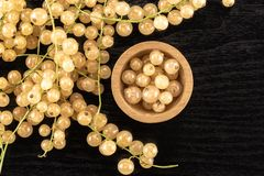 Fresh white currant berries on black wood. Lot of whole fresh white currant berry blanka variety and wooden bowl full of berries flatlay on black wood royalty free stock image