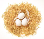 Fresh white eggs Royalty Free Stock Photos