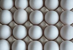 Fresh white eggs in packing from a cardboard stock photos