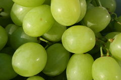 Fresh white grapes royalty free stock photo