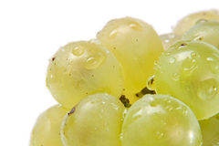 Fresh white grapes Royalty Free Stock Images