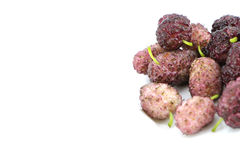 Fresh white mulberries Royalty Free Stock Image