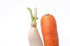 Fresh white radish and carrot solated on white background Royalty Free Stock Photo