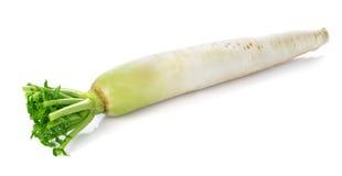 Fresh white radish Stock Photo