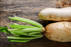 Fresh white radish. Radish is root vegetable has a lot of health Stock Photography