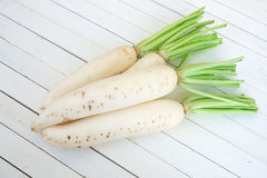 fresh white radishes Stock Image