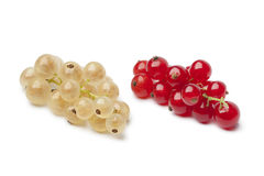 Fresh white and red currants Stock Photo