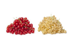 Fresh white and red currants Stock Images