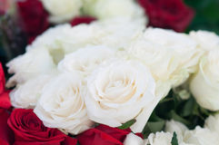 Fresh white roses in bouquet. Romance concept. Valentine Stock Image