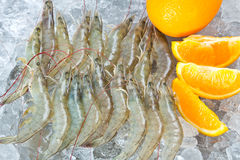Fresh White shrimps Stock Photography