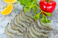 Fresh White shrimps and vegetables Royalty Free Stock Images