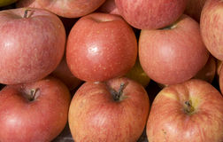 Fresh whole apples. On sale in market Royalty Free Stock Images