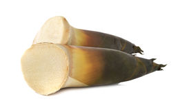 Fresh whole bamboo shoots on white Stock Images