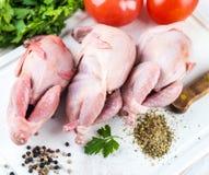 Fresh whole bird olf quai Stock Photos