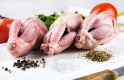 Fresh whole bird of quail. With tomatoes and dill Stock Photography