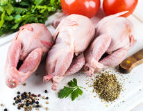 Fresh whole bird of quail. With tomatoes and dill Royalty Free Stock Images
