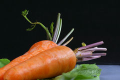 Fresh whole carrots Stock Photo