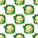 Fresh whole cauliflower seamless pattern Royalty Free Stock Photo