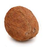 Fresh whole coconut Stock Photo