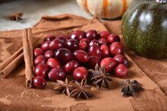 Fresh cranberries with cinnamon and star anise royalty free stock photography