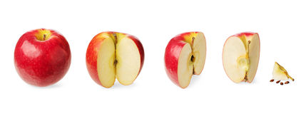 Fresh whole and cutted apple Royalty Free Stock Photography