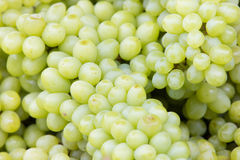 Fresh whole green grape Royalty Free Stock Image