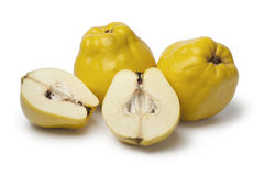 Fresh whole and half yellow Quinces. Fresh yellow whole and half Quinces on white background Stock Photos