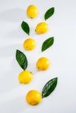 Fresh whole lemons and leaves on white Stock Image