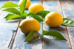 Fresh whole lemons wish leaves on wooden old blue background Royalty Free Stock Image
