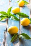 Fresh whole lemons wish leaves on wooden old blue background Stock Photos