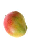 Fresh Whole Mango Royalty Free Stock Image