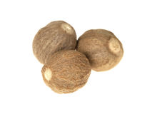 Fresh Whole Nutmeg Stock Photography