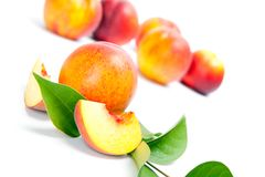 Fresh whole peaches with cut, isolated on white background.  Stock Photography