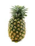 Fresh whole pineapple isolate on white background. Pineapple isolate on white background stock images