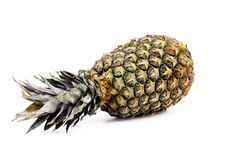 Fresh whole pineapple. Royalty Free Stock Photos